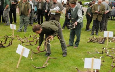 Výstava jeleních shozů – Orlické Záhoří 2017